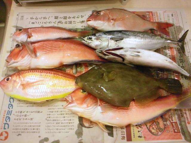 http://chinpei.com/f/2011/10/22/DSC_0120.JPG