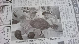 カワハギ 釣行 竹岡・劒崎沖