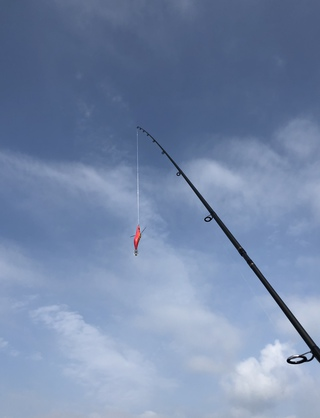 城ヶ島 磯釣り